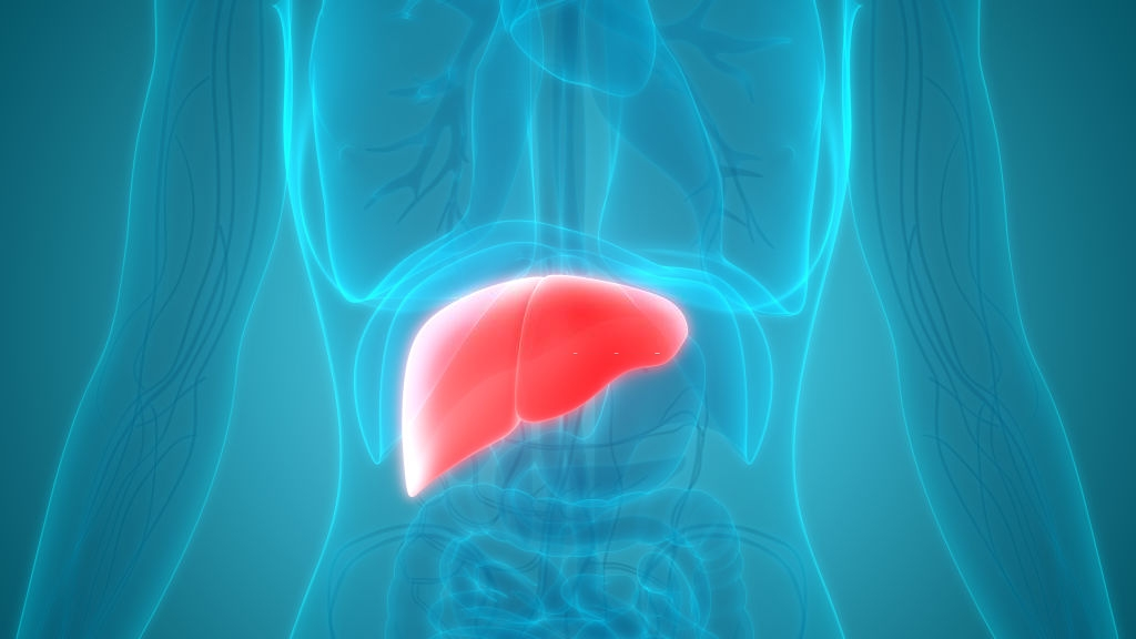 Liver Diseases